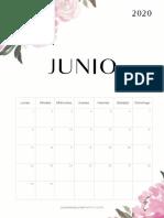 JUNIO20.pdf
