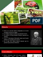 Generalidades de  Artropodos