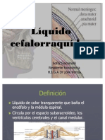 LCR completa