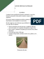 TRABAJO DE CIENCIAS NATURALES 8° A.docx