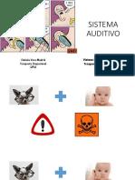 AUDICION.pdf