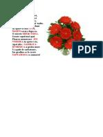 SAPTAMANA flori