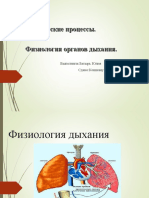 анатомия.ppt