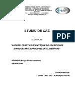 Studiu de caz Neagu Florin Alexandru.doc