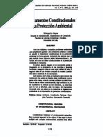 FundamentosConstitucionalesDeLaProteccionAmbiental-4278863
