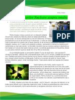 Efectele Radiatiilor Nucleare Asupra Omului Talica Stefan