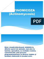 Actinomicoza.pptx