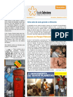 Newsletter 3 Nov Dez 2010