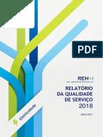 REN 2018 (1).pdf