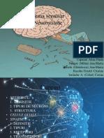 tema seminar neurostiinte.pdf