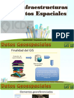 10. Infraestructura de Datos Espaciales (1).pdf