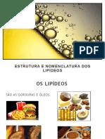 2017925_11315_lipideos.pdf