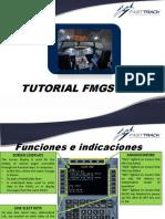 TUTORIAL FMGS.pdf