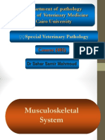 pathology_of_Musculoskeletal_System_and.pdf