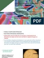 arcobacter butzleri.pptx