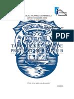 ASIGNACION PARTE B. - SISTEMAS DE PROTECCIONES.docx
