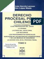 María Inés Horvitz y Julián Lopez - Derecho Procesal Penal Chileno - Tomo II