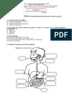 Guía preparación y evaluación biología miércoles 27 de mayo