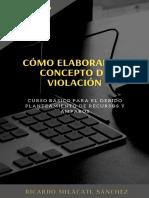 COMO ELAB UN CONCEPTO DE VIOLACIÓN.pdf
