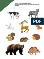 fisa sumativa 7.pdf