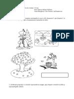 fisa sumativa 14.pdf
