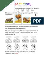 fisa sumativa 11.pdf