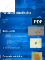 Parasitos Intestinales .pdf
