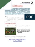 respuestas Guía 5 Lenguaje Tercero Medio B A Verdugo