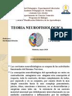 teoria neurofisiologica seminario planificacion