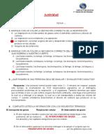 RELACIÓN ENTRE LA FUNCIÓN RESPIRATORIA Y LA NUTRICIÓN - SESION 5.docx