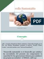 Desarrollo-Sostenible solo 4 diap