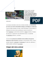 REINO ANIMAL23
