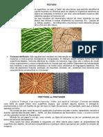 FROTAGEM.pdf