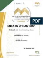 ensayo ohsas 18001