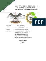 LADRILLERAS ERGO CASI.docx