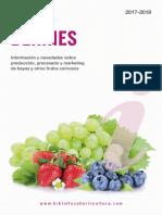Info Berries 2017-18