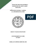ensayo y plan de capacitación