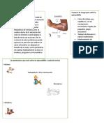 informacion  Poster