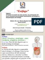 esofago-120614081411-phpapp02.pdf