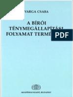 varga-a-biroi-tenymegallapitasi-folyamat-termeszete-1992-2001