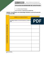 FORMATO 1 CAPACIT[1]