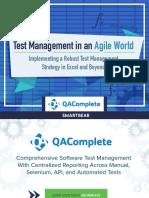 Test-Management-in-Agile.pdf