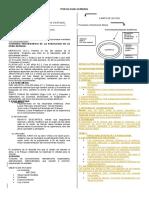 TRES TEMAS PSICOLOGIA GENERAL.docx