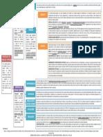 14. Mapa concep. Ineficacias.pdf