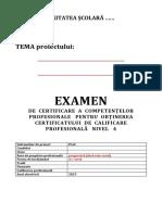 Documente-atestat (1)