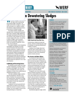 Innovations in Dewatering Sludges