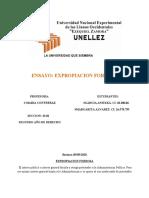 ENSAYO EXPROPIACION FORZOSA.docx