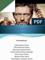 PRESENTACION ORGANO DE LA VISTA
