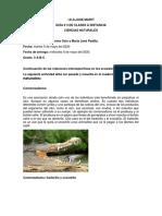 actividad 3 naturales 5 mayo.pdf