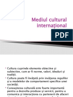 Mediul cultural internațional